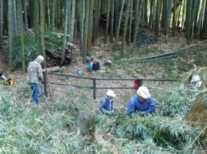 170308竹笹処理