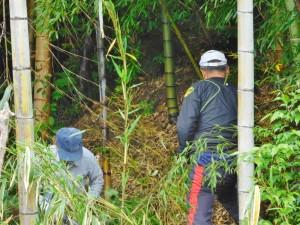 170510竹林整備作業風景