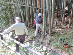 191113-3竹林の整備
