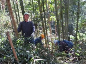 191113-3竹林の整備2
