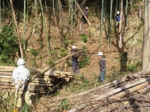 200212-4伐倒竹の処理